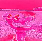 pink eyes